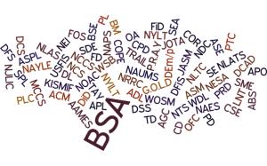 BSA-Acronyms